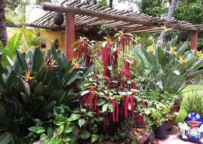 palapa joes restaurant la manzanilla mexico 3
